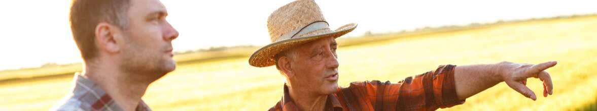 Produtor Rural e as novas formas de vender