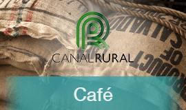 Café registra cotações estáveis no Brasil, com Nova York perdendo força