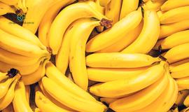 Mercado de Banana está em alta no país