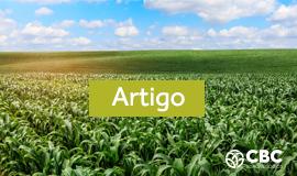 [Content in Portuguese]Produtor troca milho por insumo para bancar plantio da 2ª safra